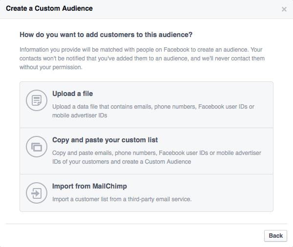 Facebook ads - custom audience